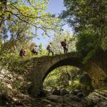 Trekking Abelonia Appolo Trails